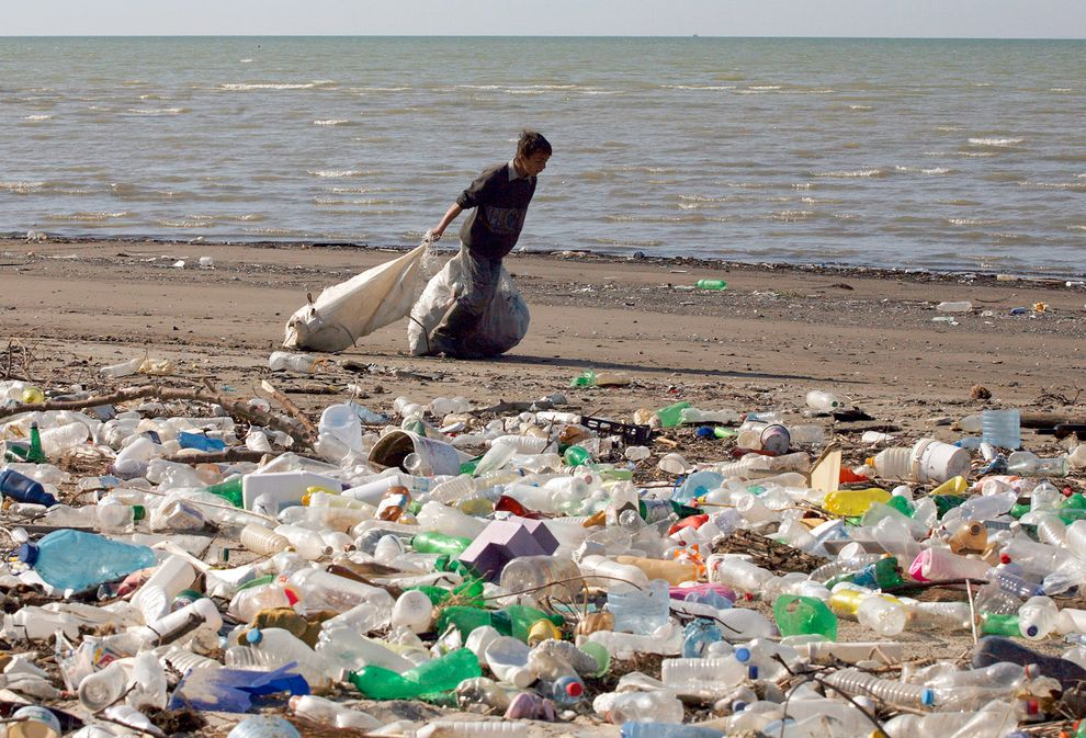 pollution polymer and plastic free zone Strive to go plastics-free and identify where there may be  experts on ocean plastic pollution,  digital— according to a unique zone and sub-zone.