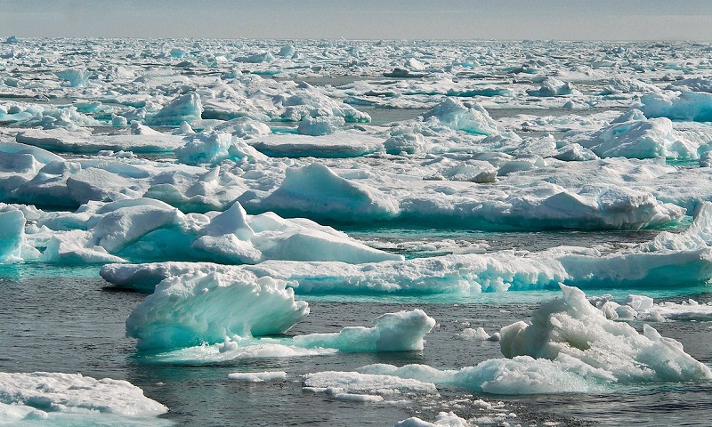 Climate change study in Canada's Hudson Bay thwarted by climate change