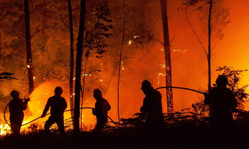 Extreme weather deaths in Europe 'could increase 50-fold by next century'