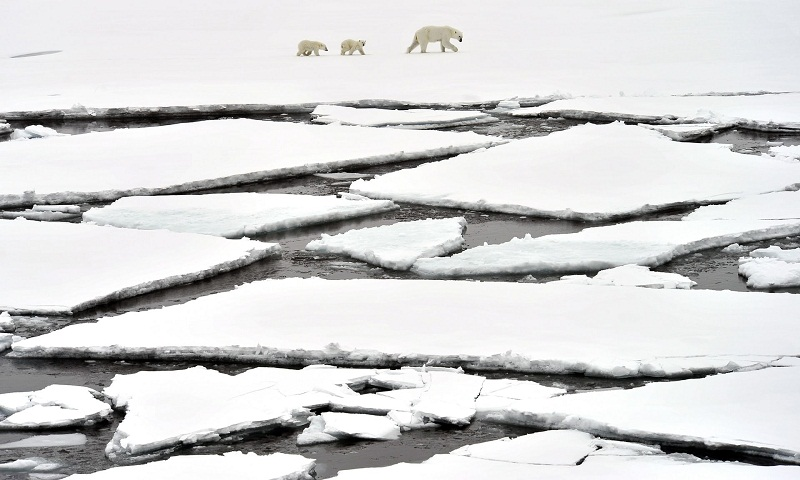 Melting Arctic ice cap falls to well below average