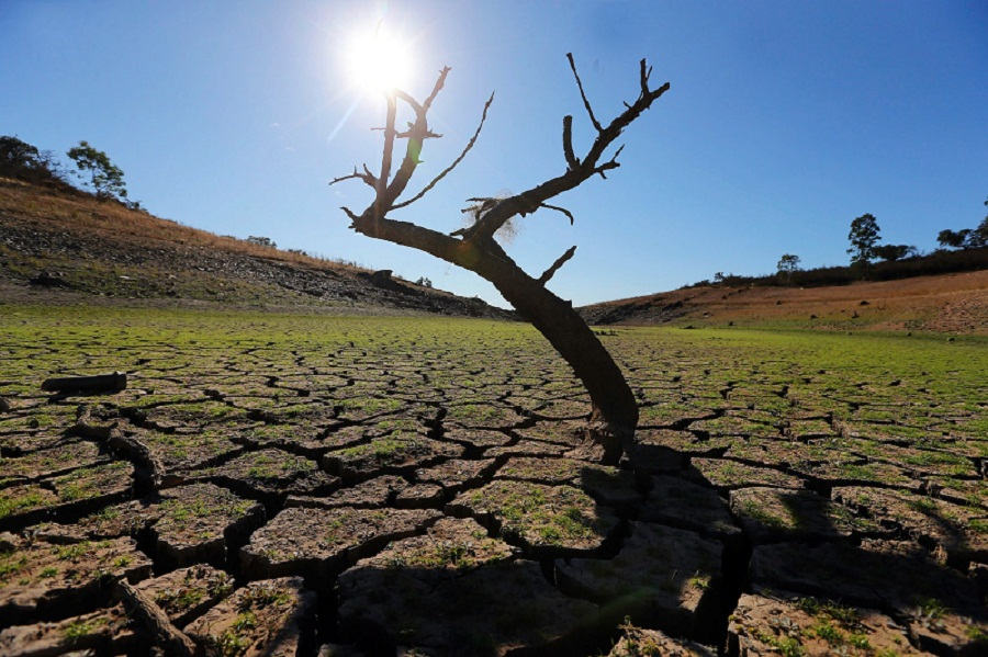 Climate change made Lucifer heatwave far more likely, scientists find