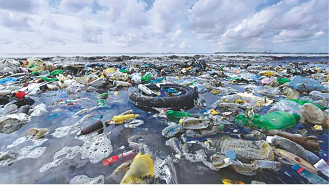 To adopt marine environment law