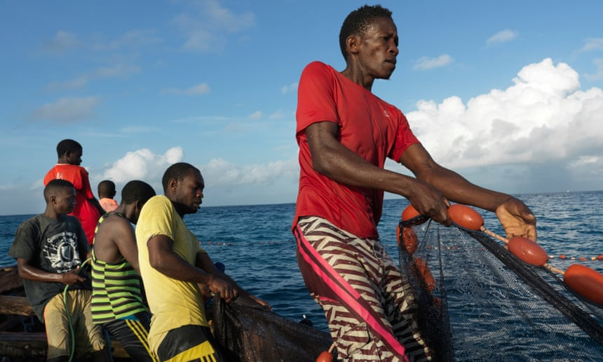 Off Tanzania, in one of the world's richest seas, why is the catch getting smaller?