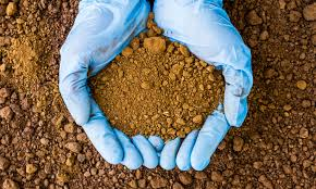 Scientists call for eight steps to increase soil carbon for climate action and food security