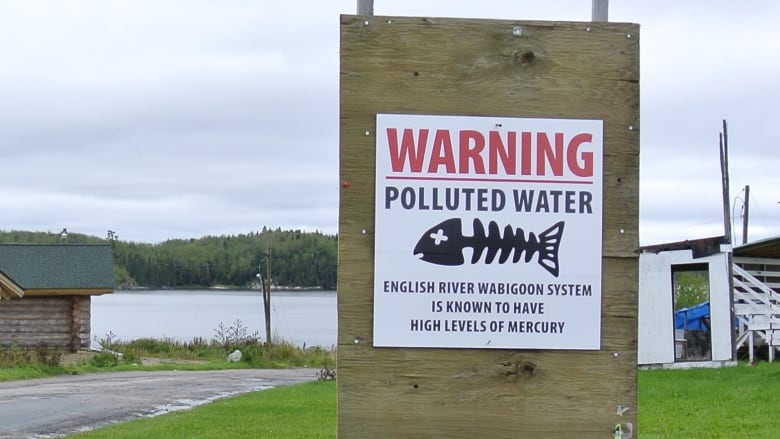 New report calls for 'urgent action' over mercury poisoning of Grassy Narrows youth, mothers