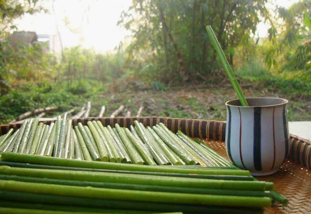 grass-straws-6