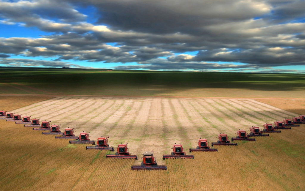 Climate change may cut Kazakh grain harvest by 37 percent by 2030