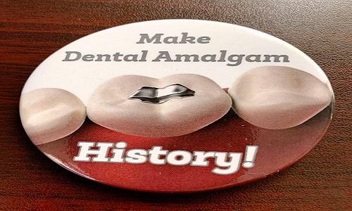 Support the African Amalgam Amendment