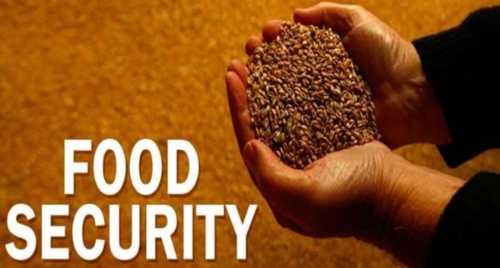 food-security-plan