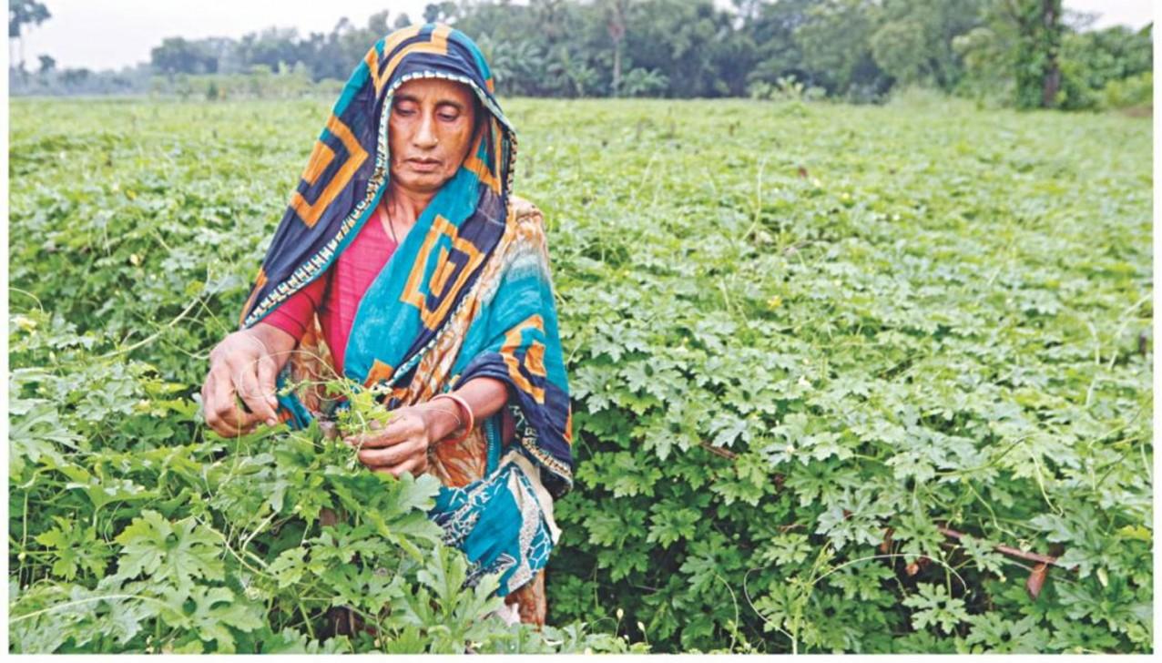 ensuring-food-security