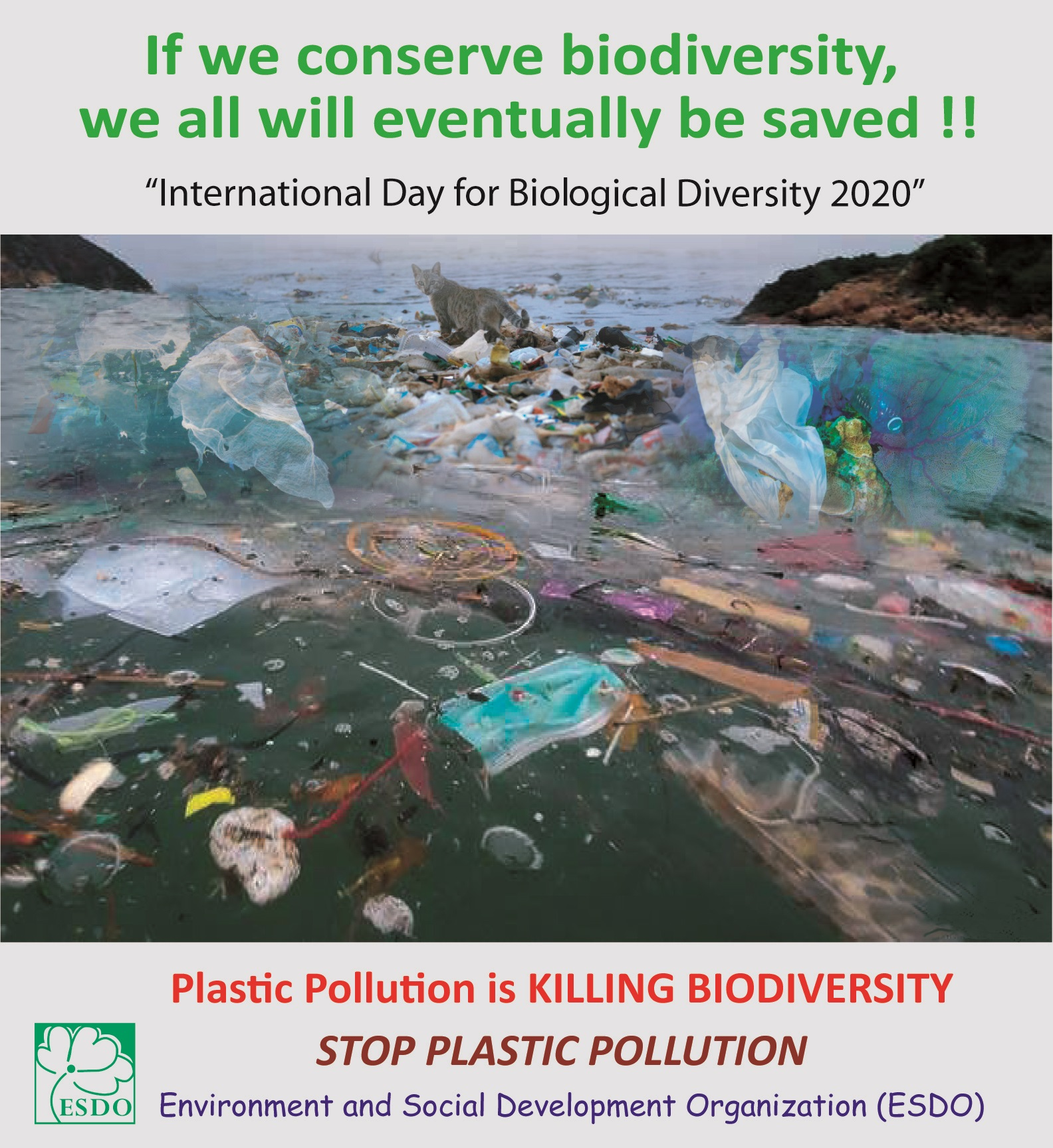 ESDO urges everyone to stop #plasticpollution and to save Biodiversity