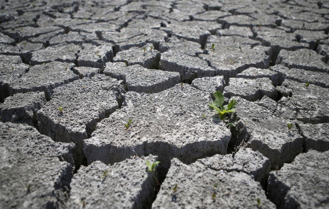 desertification-and-drought-day (1)