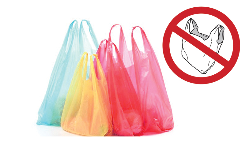 Green activists for stopping use of plastic bags