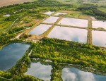 Aerial View Retention Basins, Wet Pond, Wet Detention Basin Or S