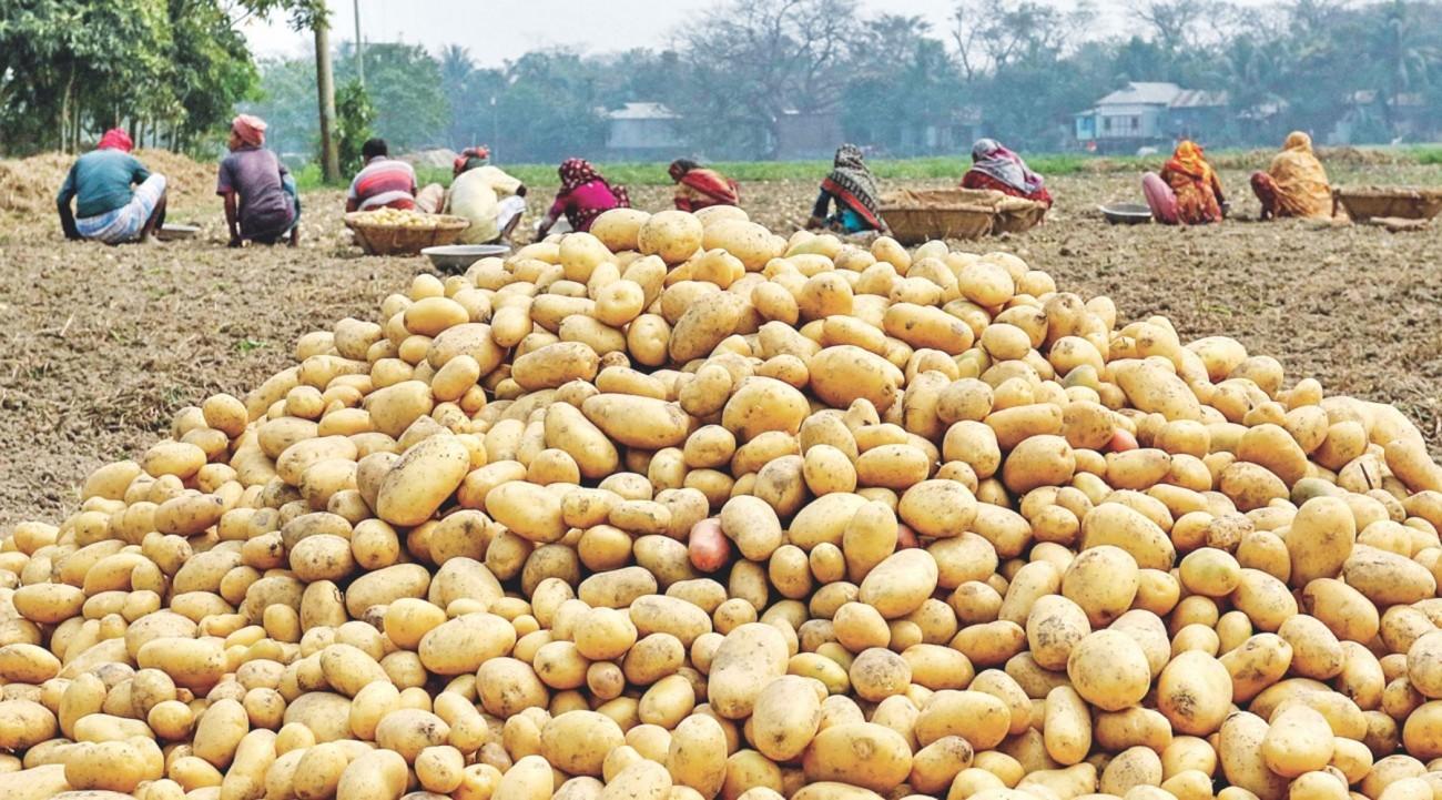 food-security-post-pandemic-bangladesh