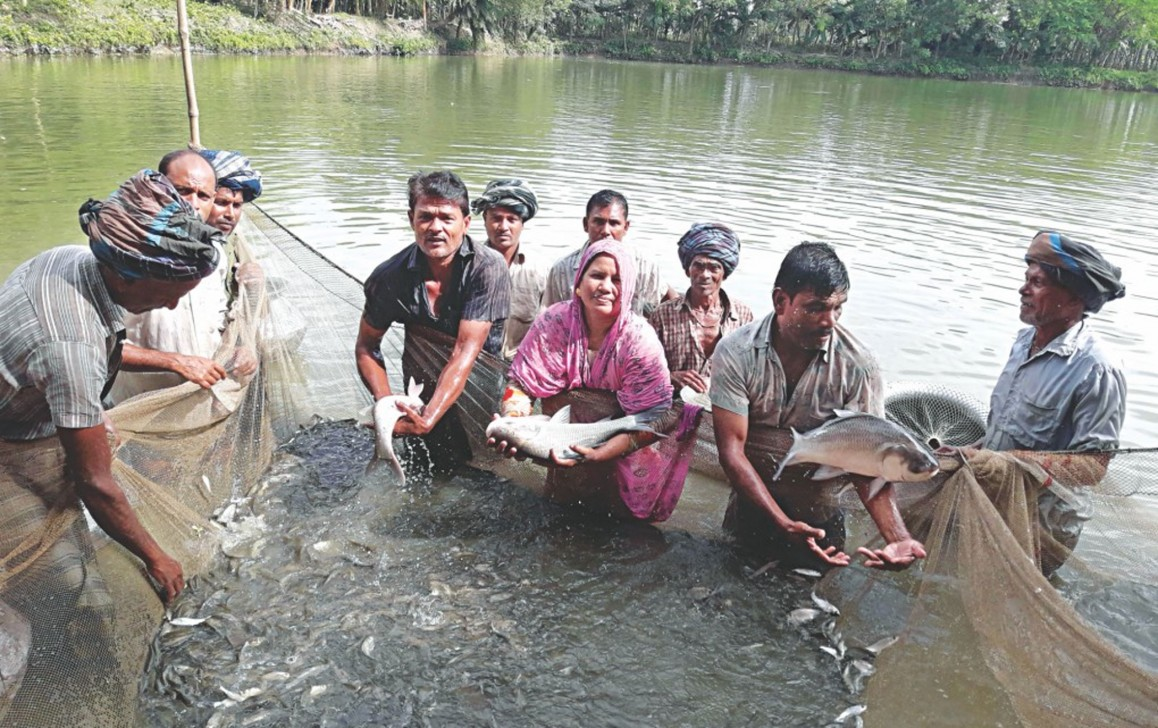 Aquaculture in Bangladesh: Farming without plunder