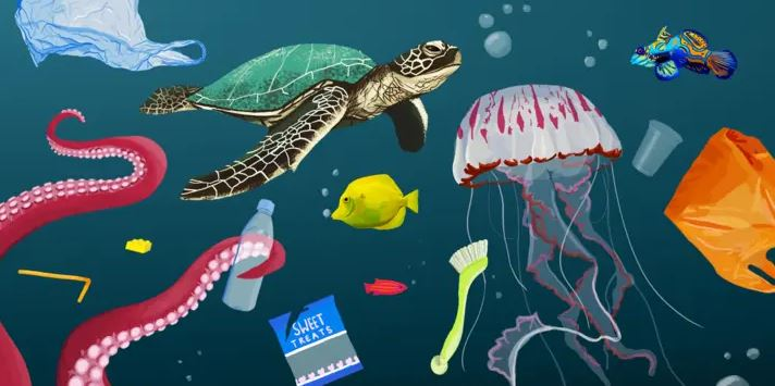In 2019, 220 Million Pounds Worth of Plastic Waste was Dumped in the Sea