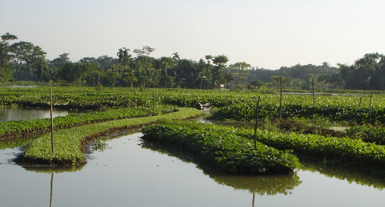 Is floating agriculture a nature-based solution?