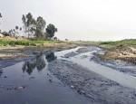industrialisation-killing-sutang-river
