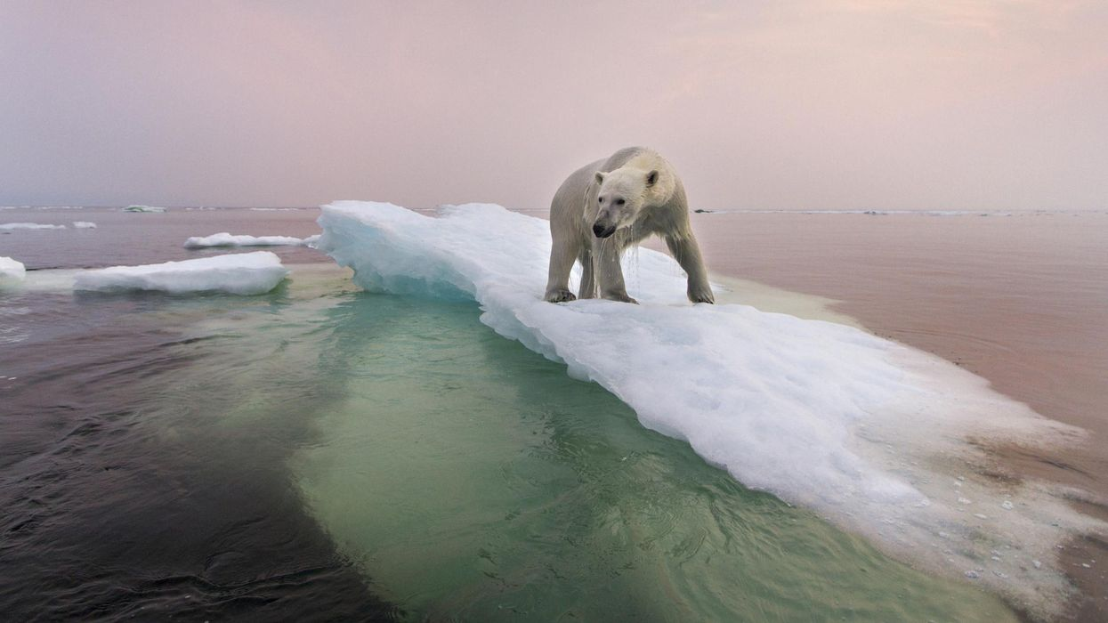 Climate Change: Everything You Need to Know
