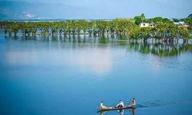 Tourists are roaming around Tanguar Haor, Sunamganj, Bangladesh