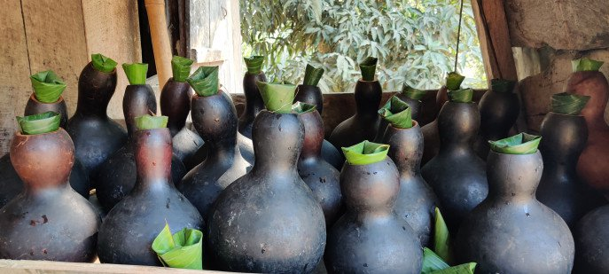 Tale of 'Tuiya': Water pots made from bottle gourd